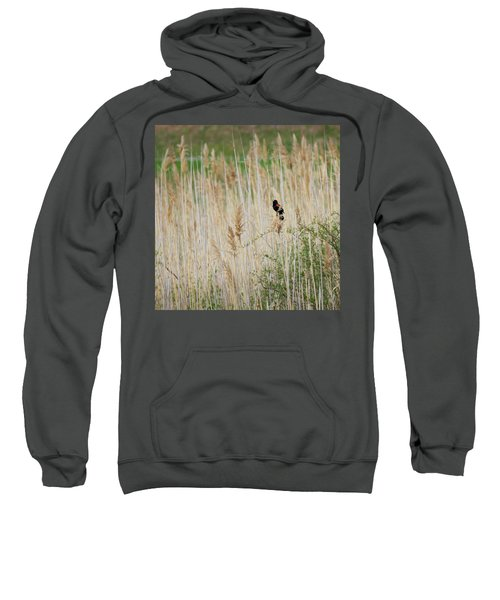 Sweatshirt featuring the photograph Sing For Spring Square by Bill Wakeley