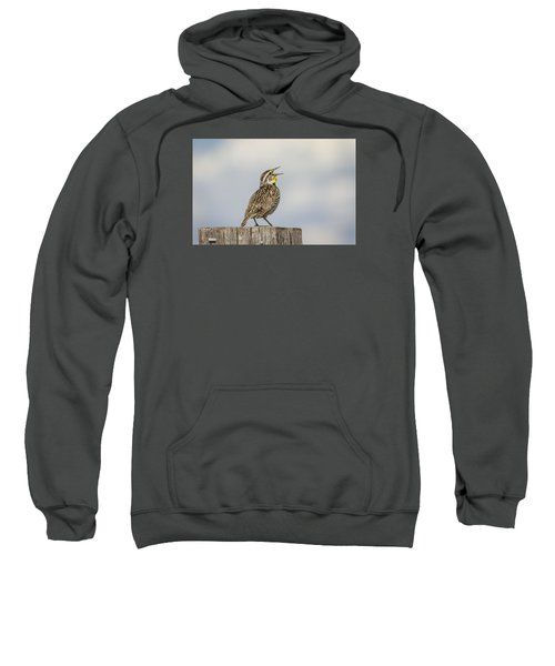 Singing A Song Sweatshirt by Thomas Young