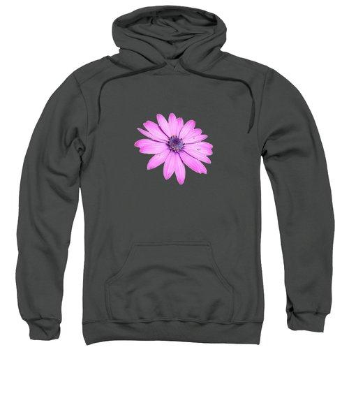 Single Pink African Daisy Sweatshirt