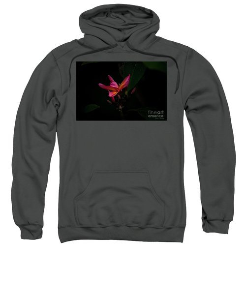 Single Red Plumeria Bloom Sweatshirt