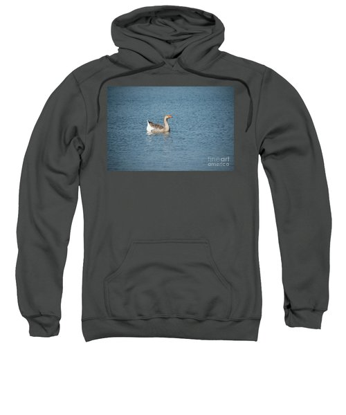 Single Swimmer Sweatshirt