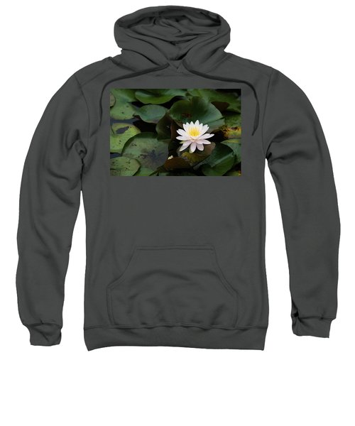 Single White Pristine Lotus Lily Sweatshirt