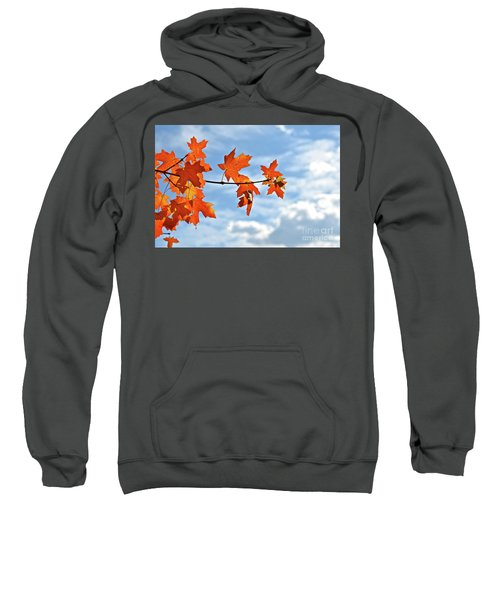 Sky View With Autumn Maple Leaves Sweatshirt