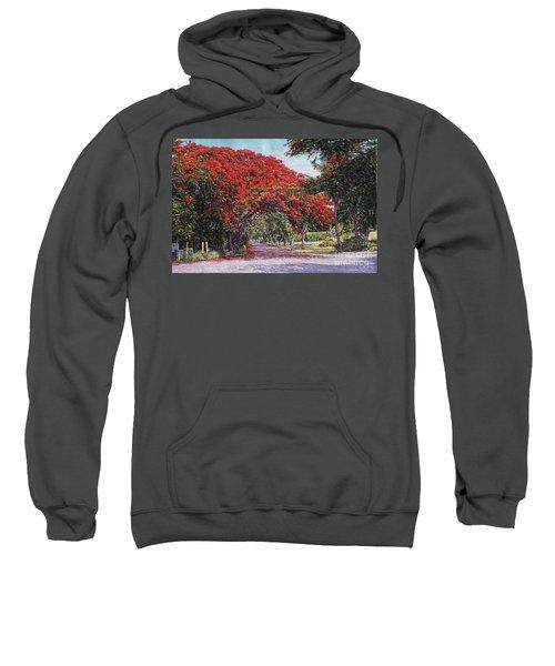 Skyline Drive Sweatshirt