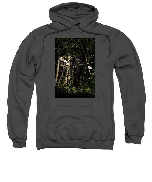 Sleeping Quarters Sweatshirt