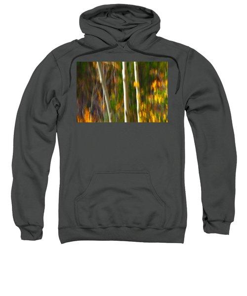 Slipping Through  Sweatshirt