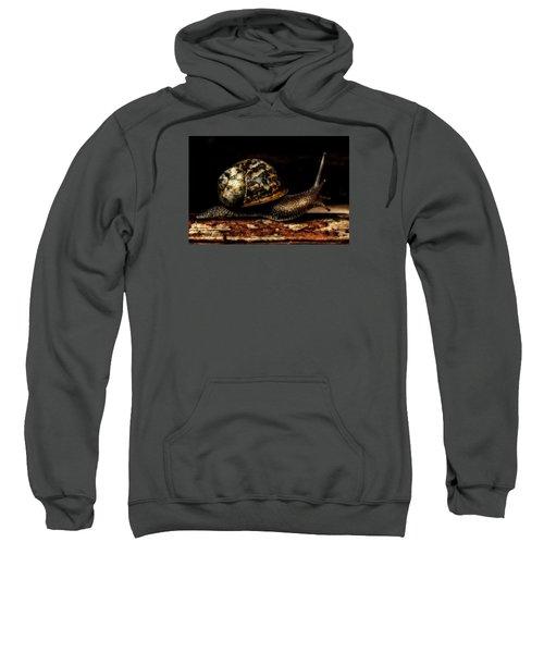 Slow Mover Sweatshirt