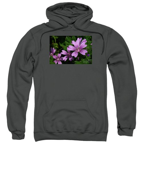 Small Mauve Flowers 6 Sweatshirt