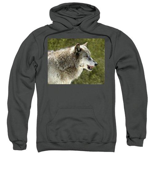 Smiling Wolf Sweatshirt