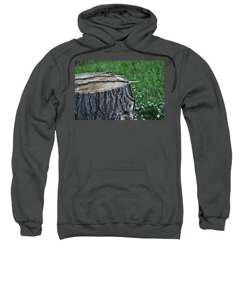S'more Sticks Sweatshirt