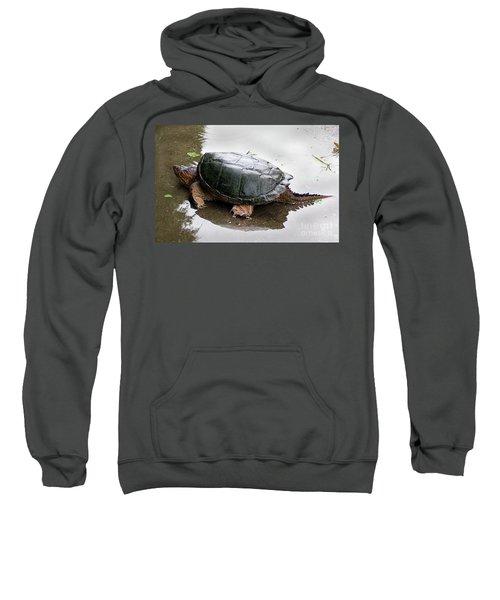 Snapping Turtle Sweatshirt