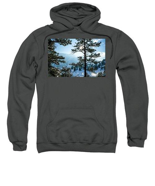 Snow-covered Trees Sweatshirt