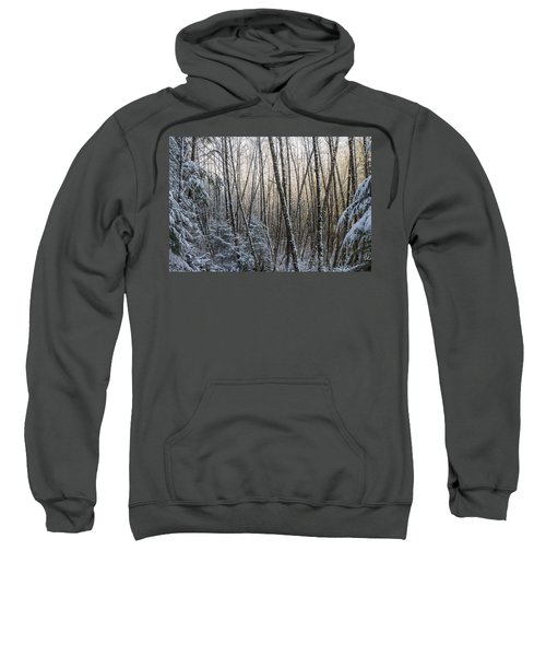 Snow On The Alders Sweatshirt