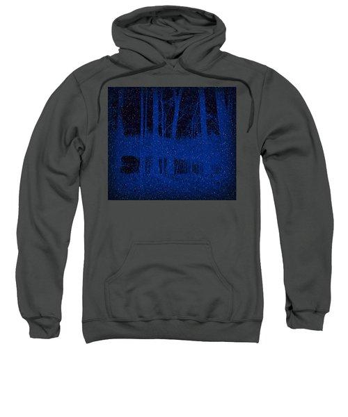 Snowfall Sweatshirt
