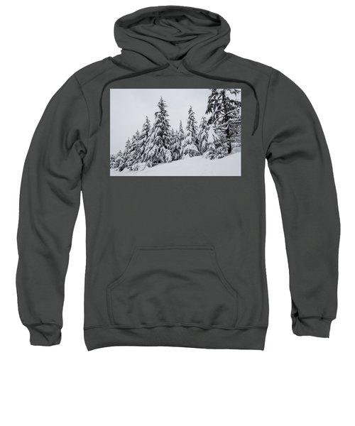 Snowy-1 Sweatshirt
