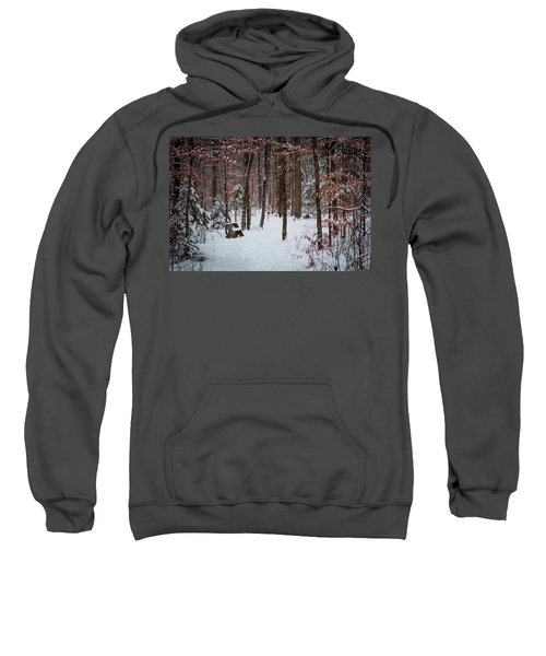 Snowy Bench Sweatshirt