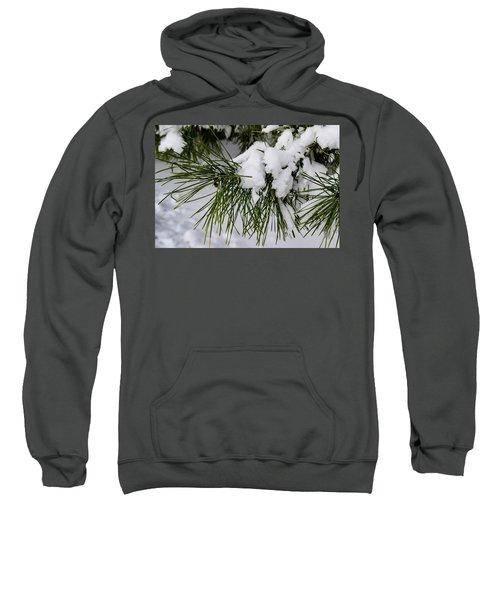 Snowy Branch Sweatshirt