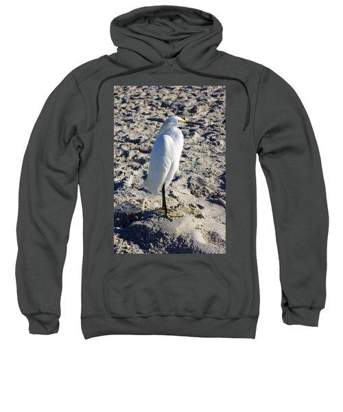 Snowy Egret At Naples, Fl Beach Sweatshirt