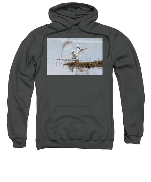 Snowy Egret Chasing His Dinner Sweatshirt