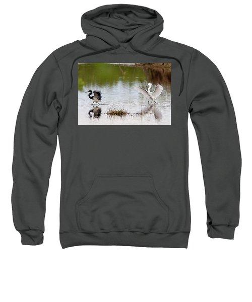 Snowy Egret Chasing Other Bird Out Of Feeding Area Sweatshirt