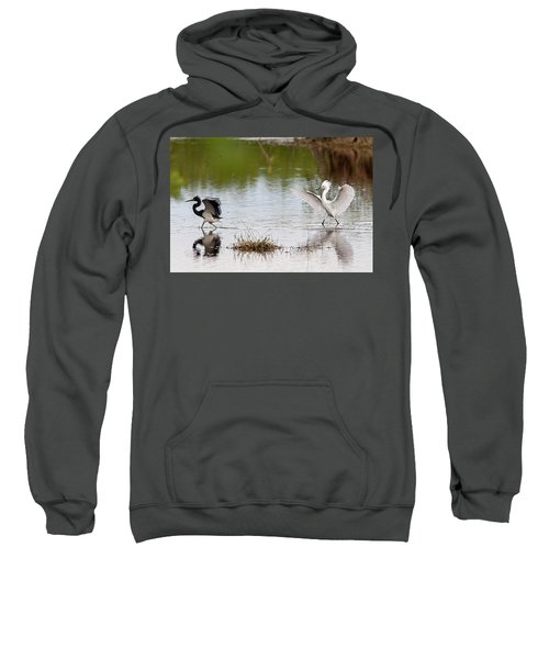 Snowy Egret Chasing Other Bird Out Of Feeding Area Sweatshirt