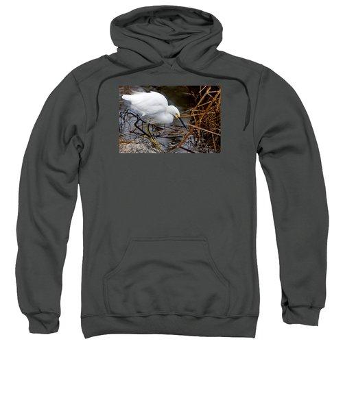 Snowy Egret Egretta Sweatshirt