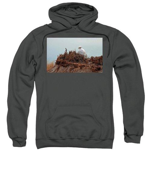 Snowy Owl In Dunes Sweatshirt