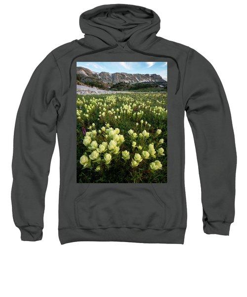 Snowy Range Paintbrush Sweatshirt