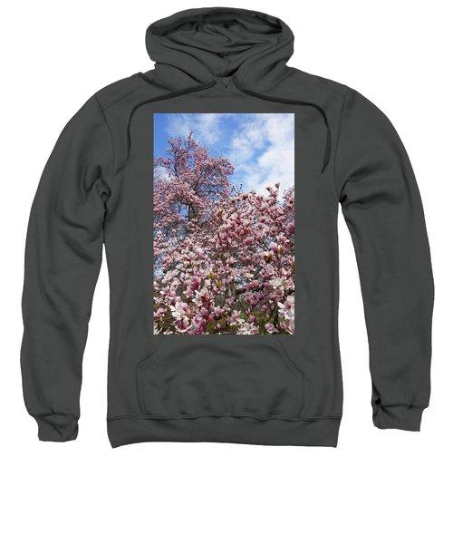 Soaring Magnolia Sweatshirt