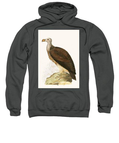 Sociable Vulture Sweatshirt by English School