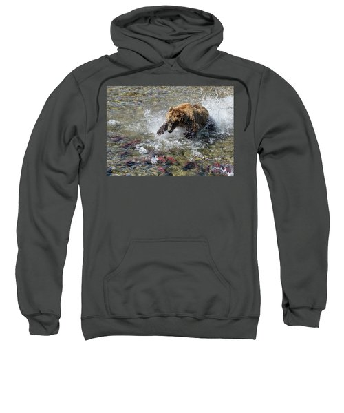Sockeye In Sight  Sweatshirt