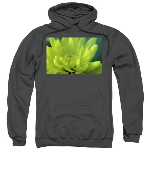 Soft Center Sweatshirt