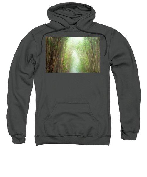 Soft Forest Light Sweatshirt