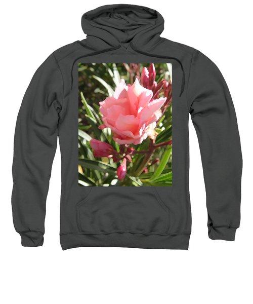 Soft Pink Blush Sweatshirt