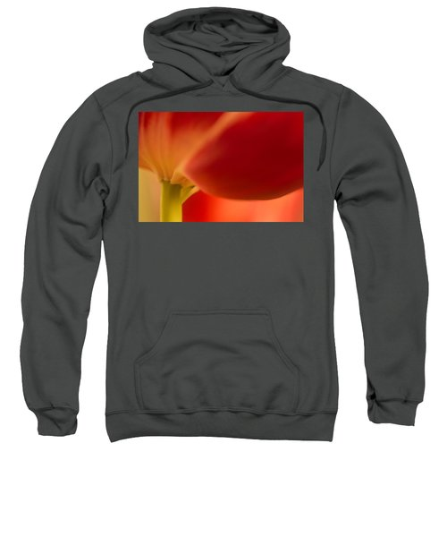 Soft Tulip Sweatshirt
