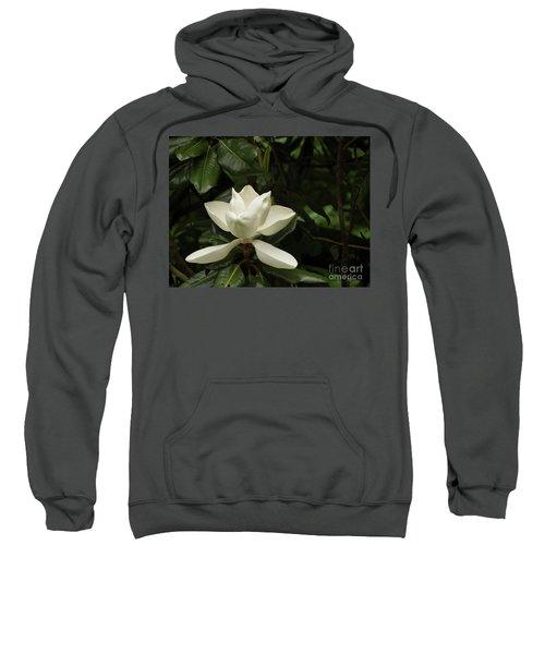 Softly Dreaming Sweatshirt
