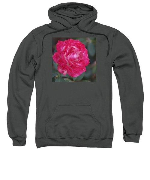 Softness 2 Sweatshirt