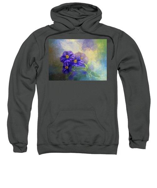 Solanum Sweatshirt