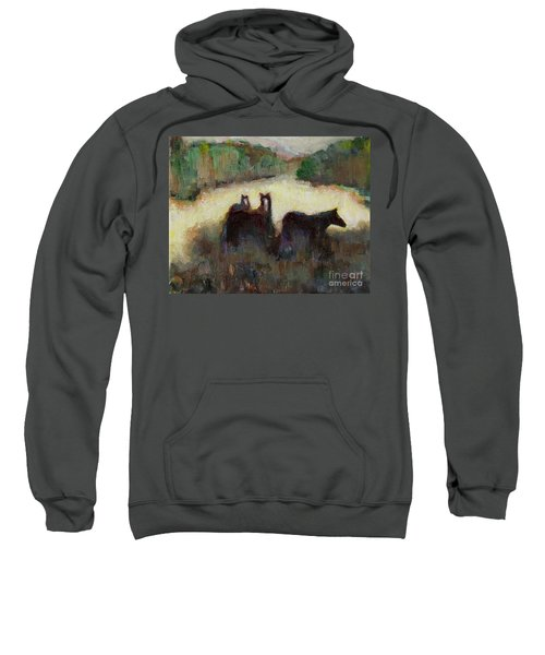 Sometimes We Need To Get Out Of The Heat Sweatshirt