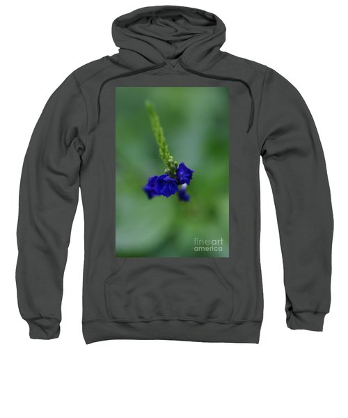 Somewhere In This Dream Sweatshirt
