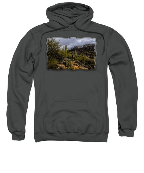 Sonoran Winter No.1 Sweatshirt