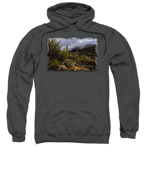 Sonoran Winter No.1 Sweatshirt