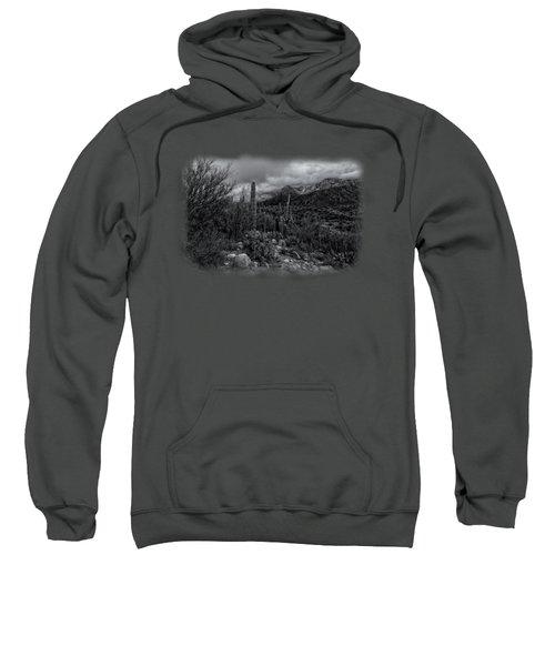 Sonoran Winter No.2 Sweatshirt