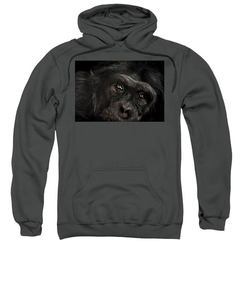 Sorrow Sweatshirt by Paul Neville