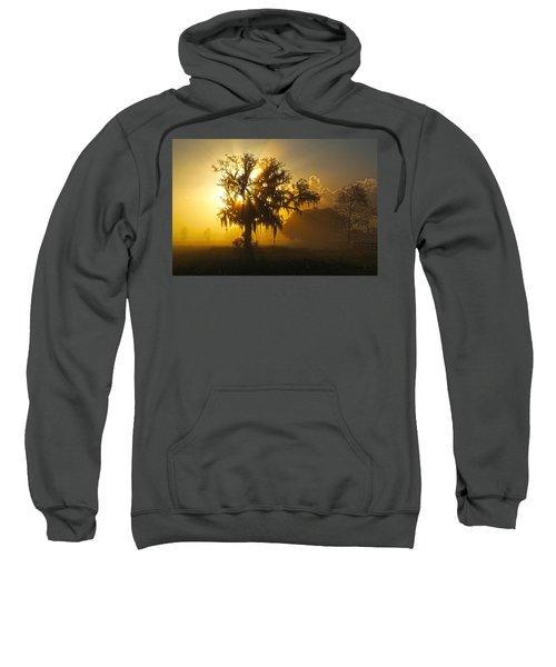 Spanish Morning Sweatshirt