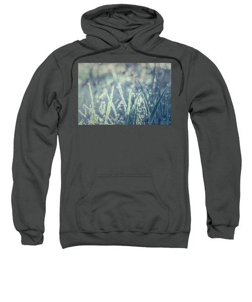 Sparklets Sweatshirt