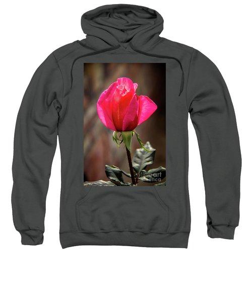 Special Rose Bud Sweatshirt