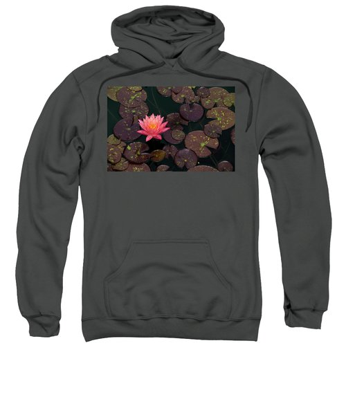 Speckled Red Lily And Pads Sweatshirt