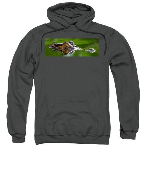 Spectacled Caiman Caiman Crocodilus Sweatshirt