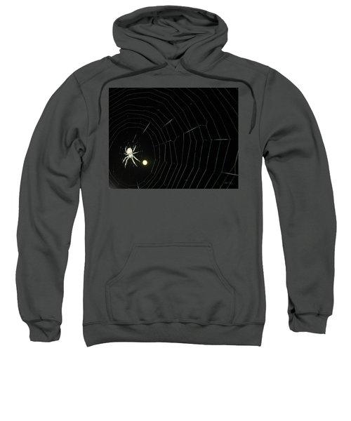 Spider Moon Sweatshirt